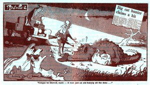 Bunyip cartoon, Daily Mirror Sydney 9 June 1978