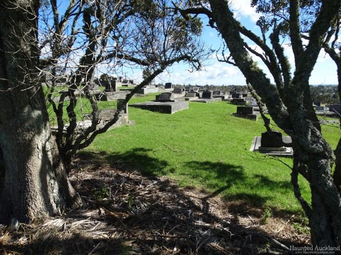 Birkenhead/Glenfield Cemetery views