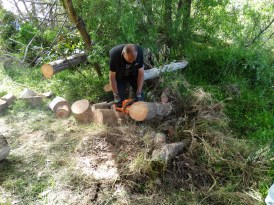 Stu Caisley, chainsawing trees and Weed Whacking a pathway through the bush to our campsite. What a bloody trooper!