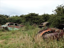 Car and tractor 'graveyard' - Auckland