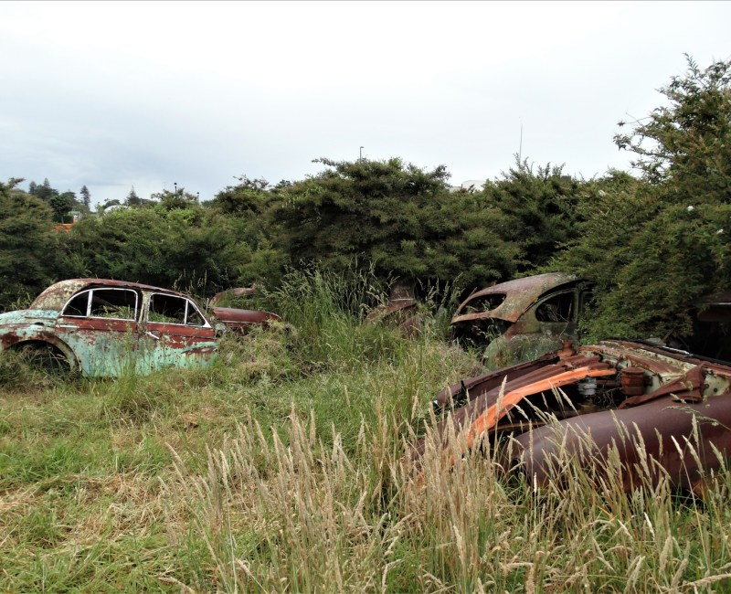 Car and tractor 'graveyard' – South Auckland