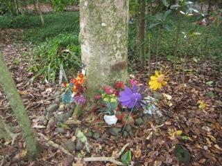 Maunu Cemetery 08