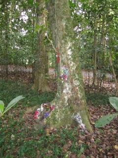 Maunu Cemetery 09