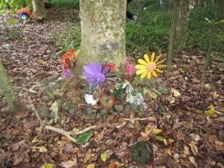 Maunu Cemetery 13