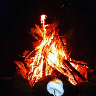 Marshmallow vs Fire: Photo by Sam Collier