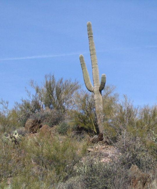 Jerome – Arizona USA