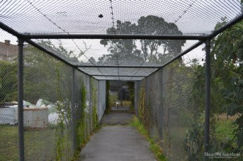 Caged walkway between the two maximum security buildings