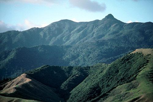 Mount Moehau, Coromandel Peninsula