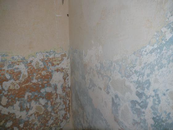 Alte Wänden renovieren