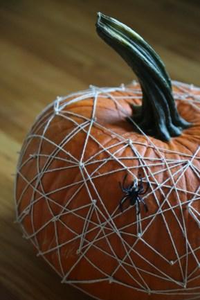 life-storage-pumpkin_-37