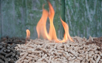 How is biomass used to save and generate electricity?
