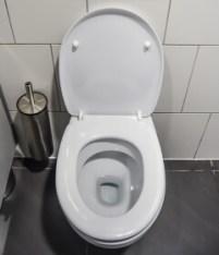 Urinstein im WC entfernen