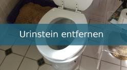 hartnäckigen Urinstein entfernen