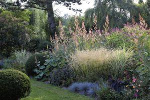 Naturgarten Anlegen Bepflanzen Gestalten   Haus Design Ideen