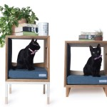 Minimalist Cat Trees Towers Beds Perfect For Modern Home Decor