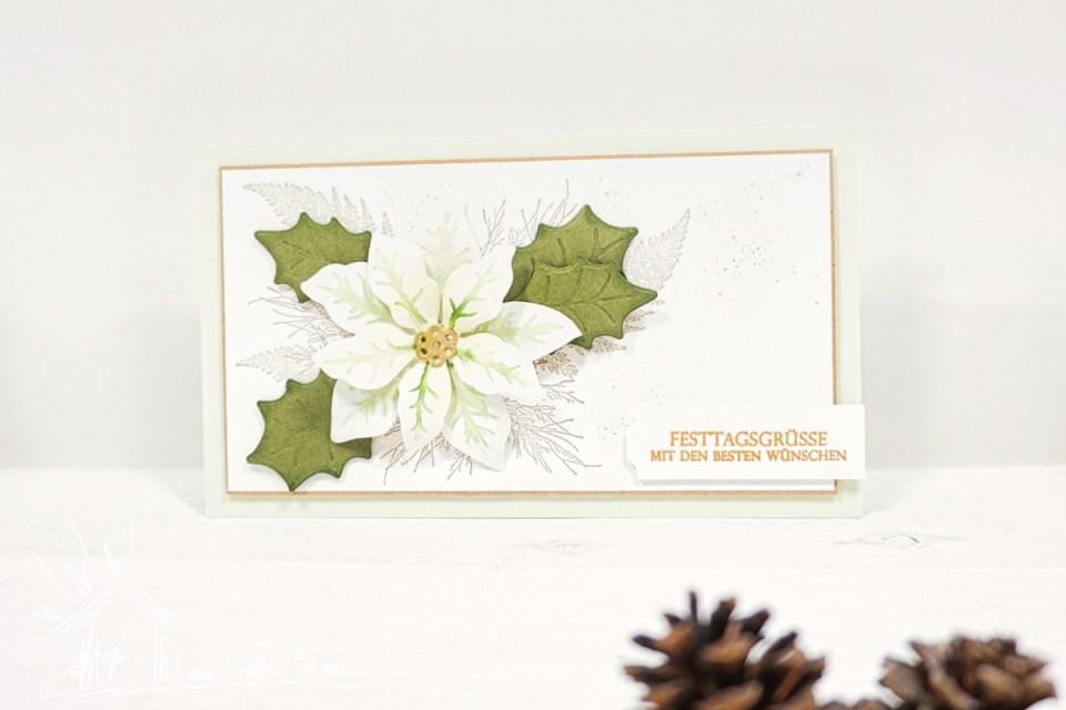 Karten mit Weihnachtsstern und Weihnachtsblüten im Juli