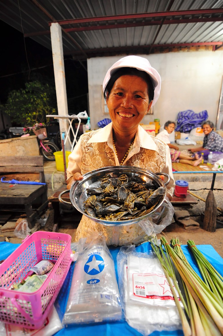 A lady selling maeng da (giant water bugs) at the Khon Kaen evening market. Photo: courtesy of Afton Halloran