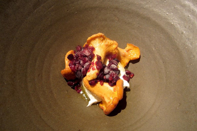 Cottage cheese, bramble, chantarelle