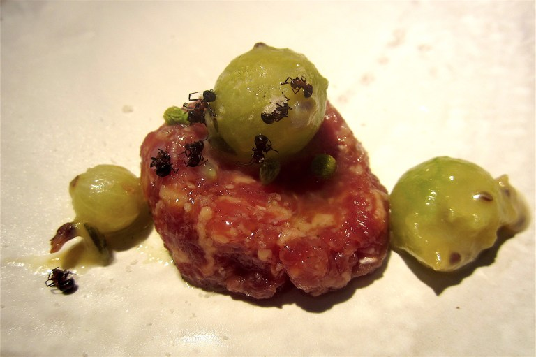 Duck, ants, gooseberries
