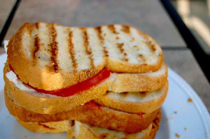 Fresh tomato and motz sandwhich - small