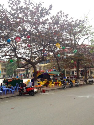 Ha Giang City's trees are filled with lanterns
