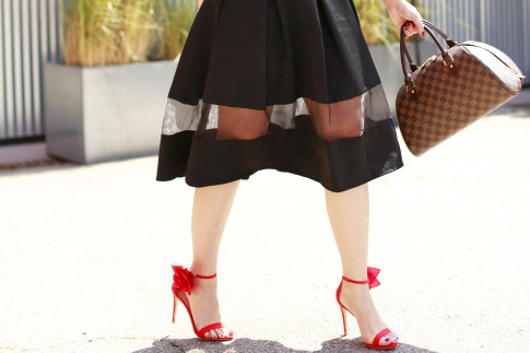 An Dyer wearing JustFab Kyla, Express midi skirt sheer panel, louis vuitton damier ribera mm