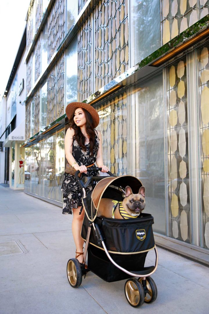 Lifestyle Fashion Blogger An Dyer with Diesel French Bulldog Luxury Pet Dog Stroller in Beverly Hills