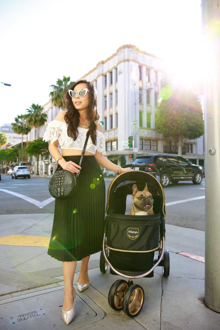 Lifestyle Fashion Blogger An Dyer with Diesel Dyer French Bulldog in a Dog Stroller Beverly Hills
