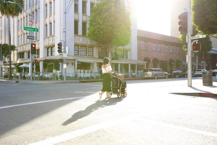 Dog Mom Pushing Stroller Beverly Hills Lifestyle Blogger