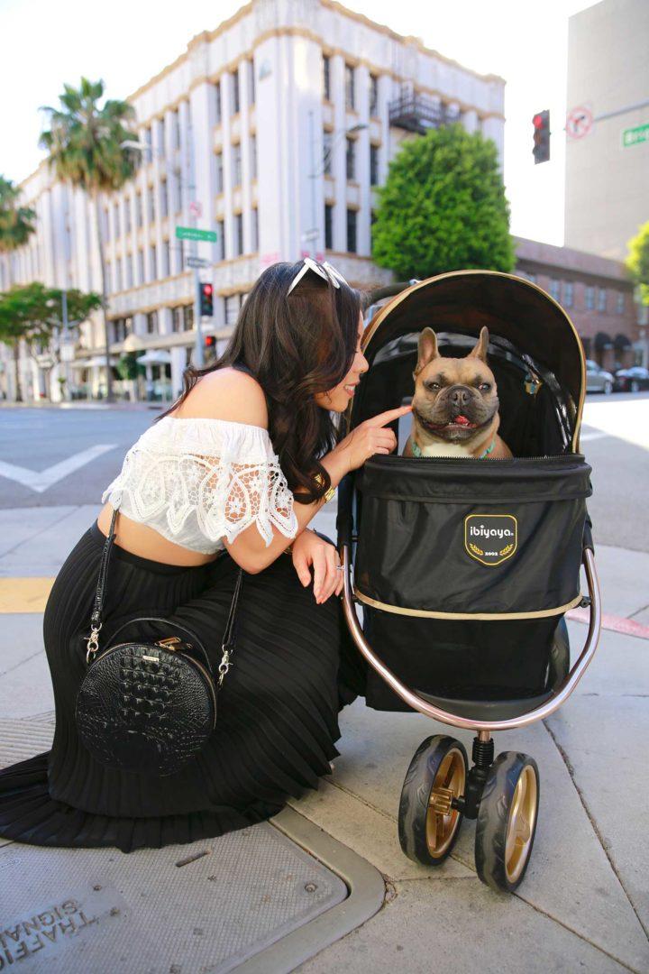 Lifestyle Fashion Blogger An Dyer Diesel Dyer Frenchie French Bulldog Dog Stroller Beverly Hills