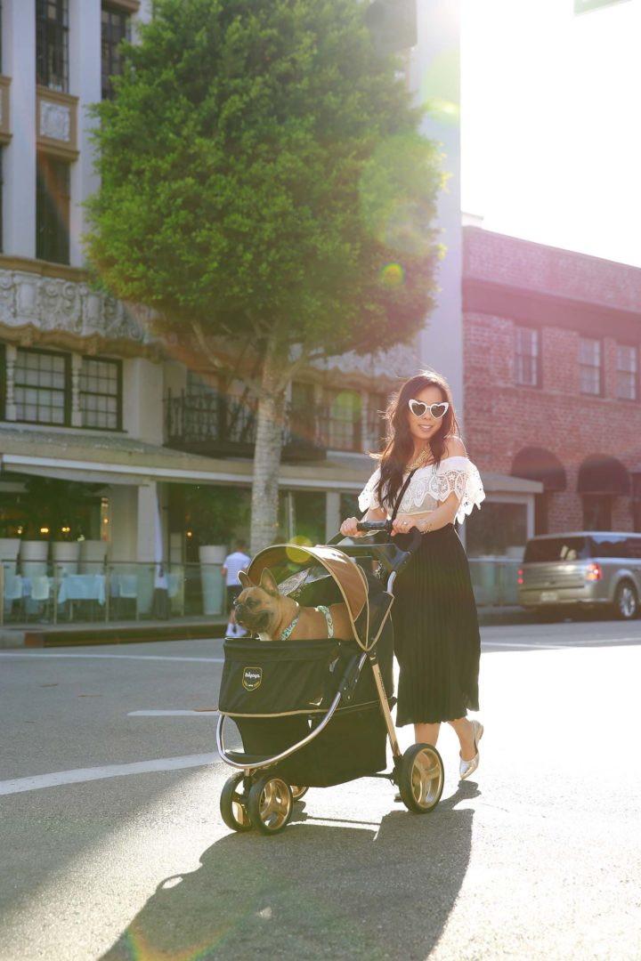Lifestyle Fashion Blogger An Dyer wearing heart sunglasses with Diesel Dyer Frenchie French Bulldog Dog Stroller Beverly Hills