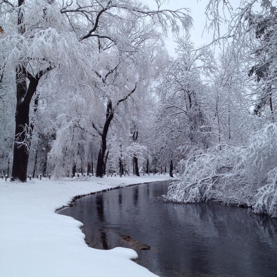 Iverson Park after a snow storm.