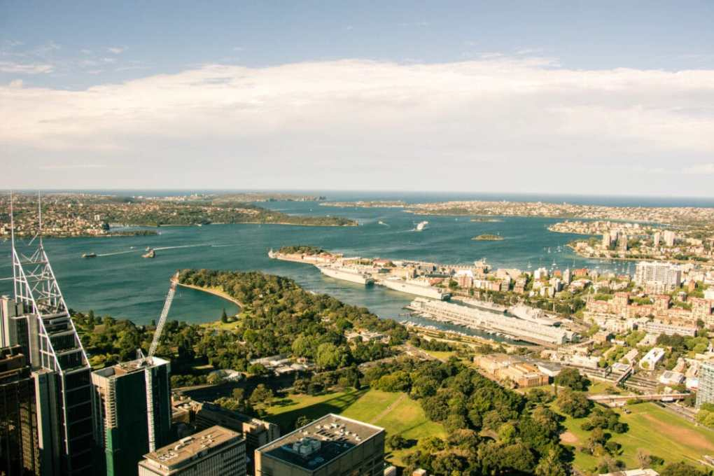 sydney sky tower view