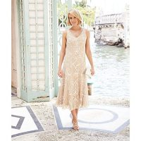 jd williams lace dress