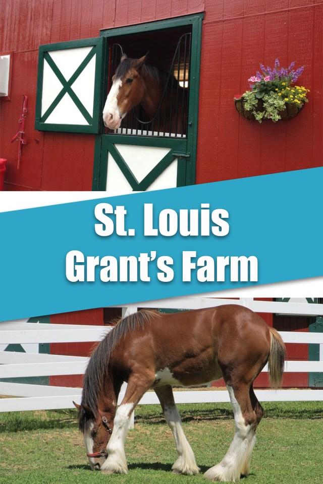 11 FREE Activities in St. Louis, Missouri