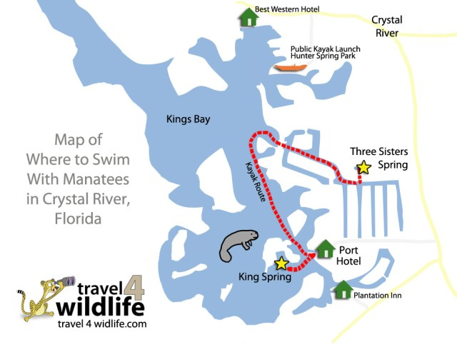 Three Sisters Springs Florida Map.3 Places To See Manatees In Florida Have Kids Will Travel Com