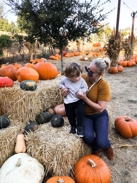 20 Toddler Friendly Fall Activities, Fall Family Activities, Have Need Want