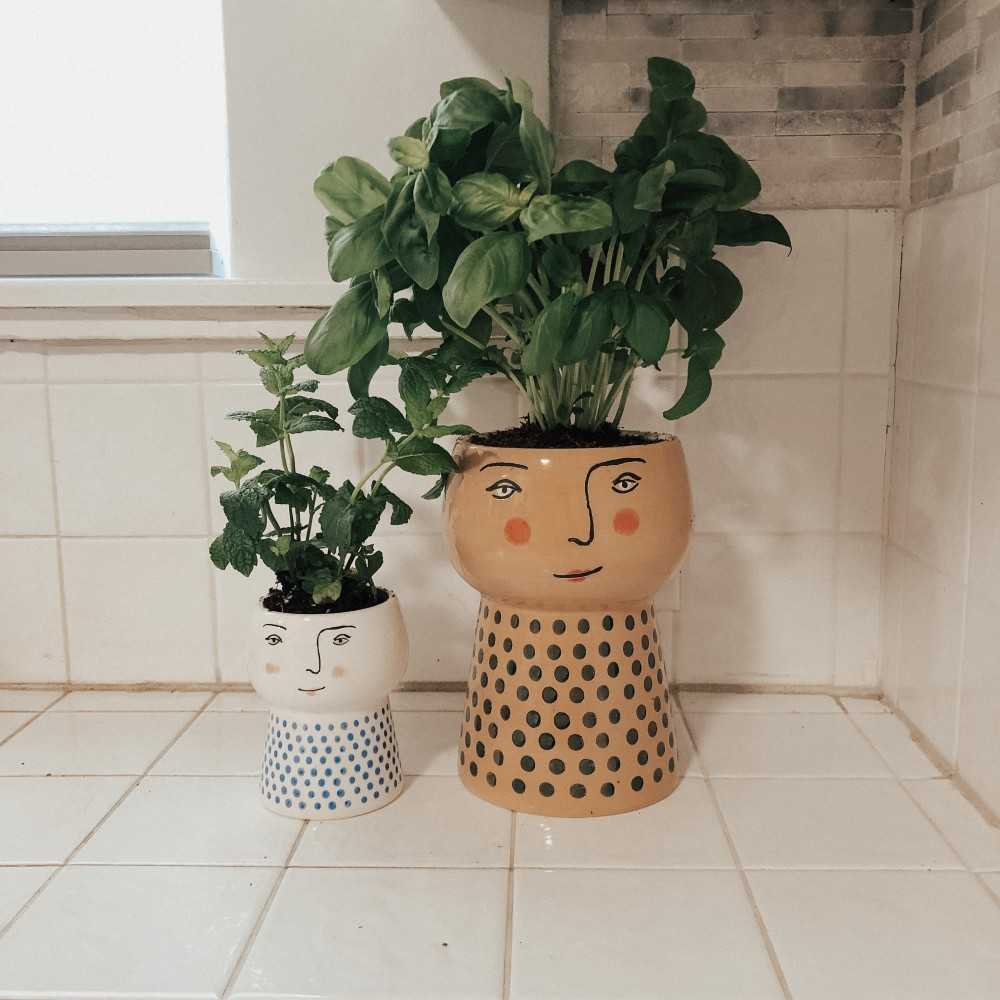 Cute planters for kitchen herbs. #herbs #planters #ceramicpots #targethome