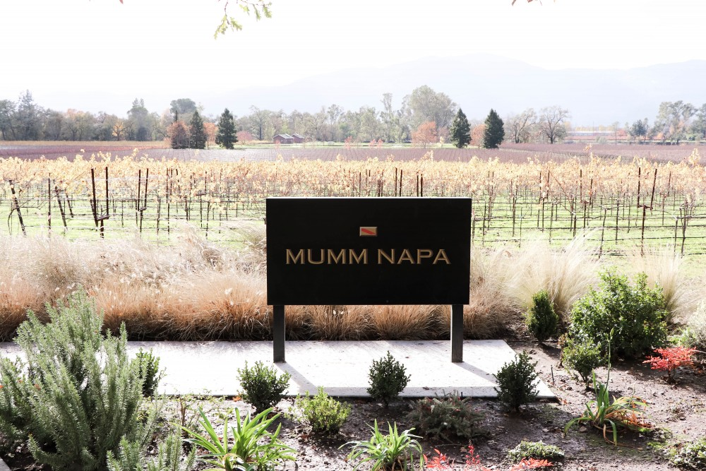 Mumm Napa is one of my favorite places to go champagne tasting in Yountville, CA | Have Need Want