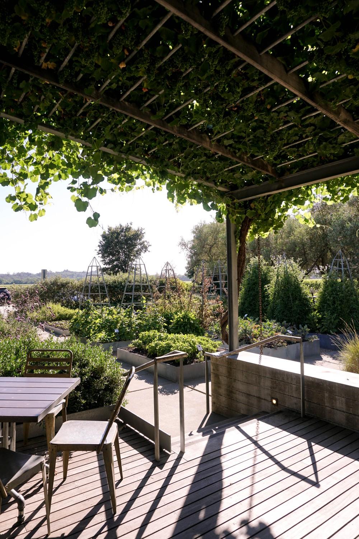 Wine Tasting in Healdsburg-Medlock Ames Winery-Food and Wine-Wine and Cheese-Wine Tasting-Wine Country-Have Need Want 7