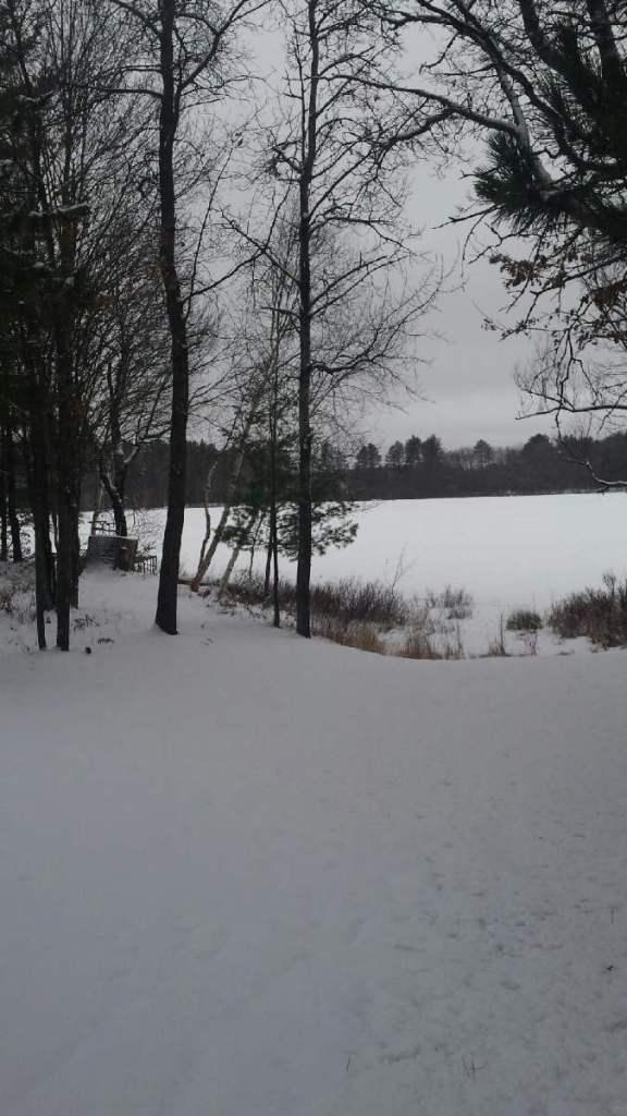 snowy lake view