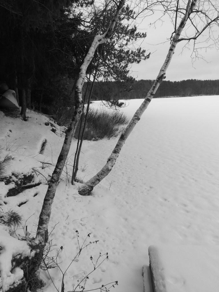 birch_lake view