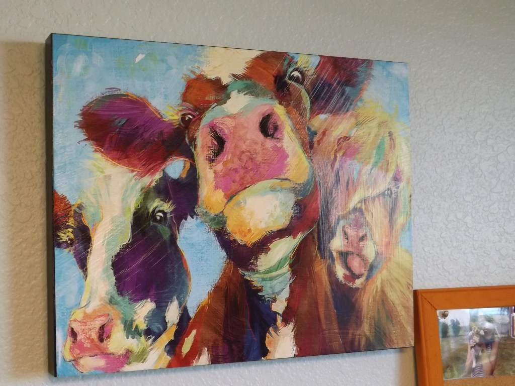 3 cows artwork