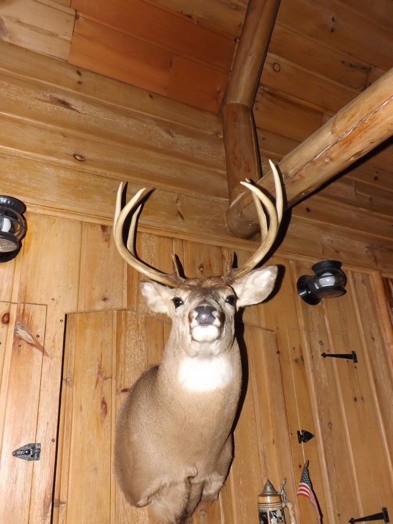 Deer Head over Fireplace