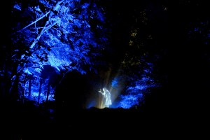 At Forest Lumina, Hologram: Margaret meets the fairies (hologram)