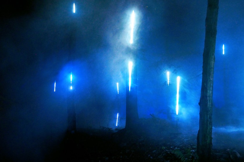 The Misty Portal at Foresta Lumina