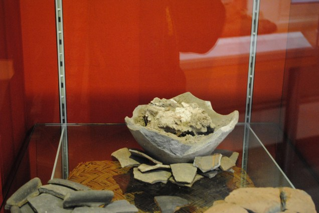 Cremains remains on display in Havering Museum