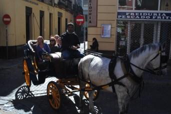 På tur med hestetaxi