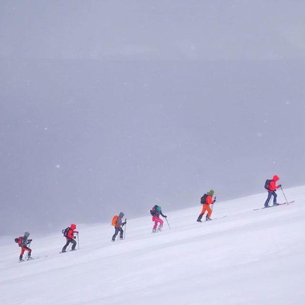 I dag var det oss, og hundre mellomeuropeiske følger, på Kjelvågtinden, Uløya. Det var snøføyk og topp stemning.