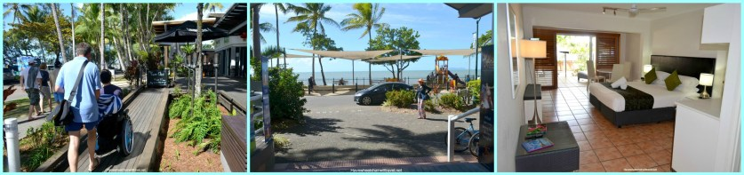Collagepalmcove